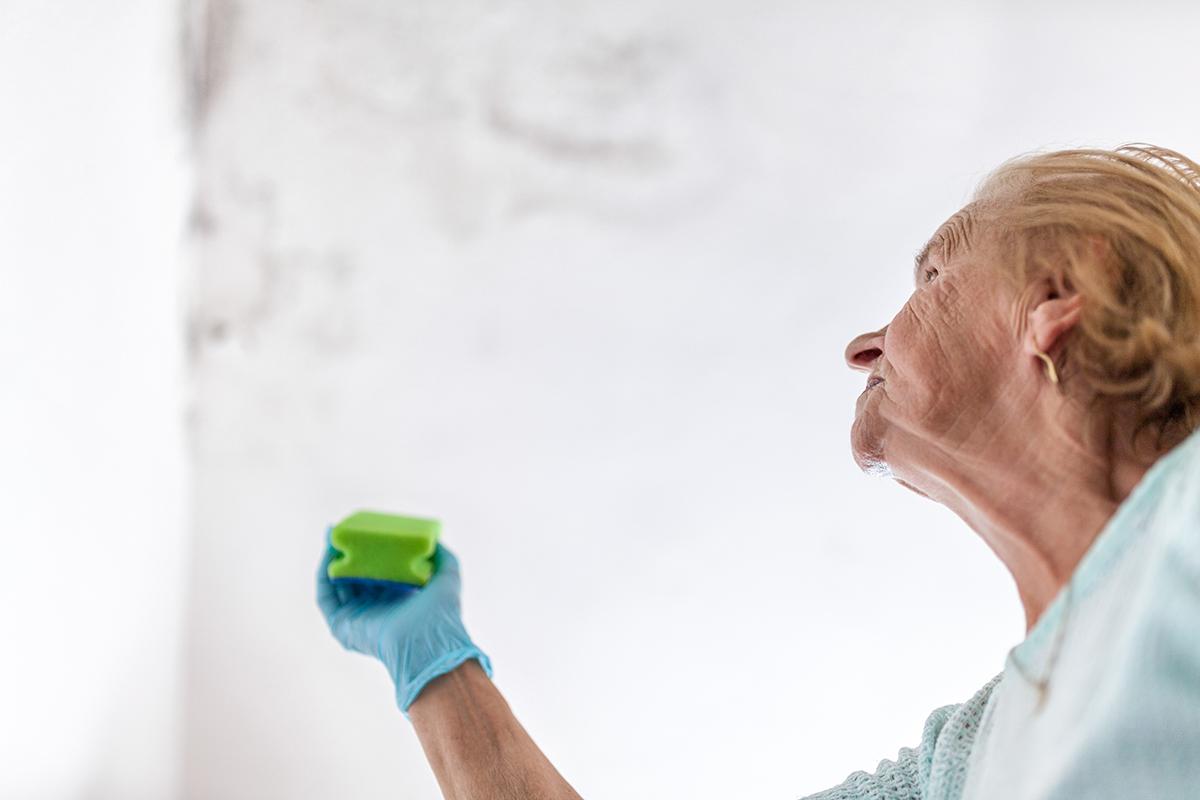 muffa sui muri rimedi della nonna
